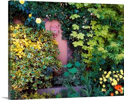 The Courtyard Garden, Fairfield Lodge, Dublin, Ireland