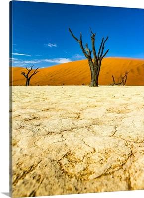The Salt Pan Of Deadvlei, Sossusvlei, Hardap Region, Namibia