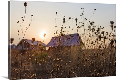 The Setting Sun Over The Summer Houses In A Village, Tarusa, Russia