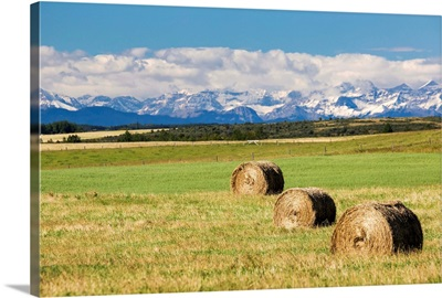 Three hay bales in a field with mountains, Alberta, Canada.