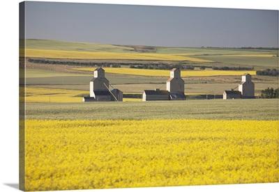 Three Old Wooden Grain Elevators At Sunrise; Mosleigh, Alberta, Canada