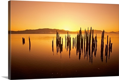 Tillamook Bay At Sunrise, Oregon