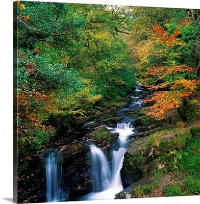 Torc Waterfall, County Kerry, Ireland