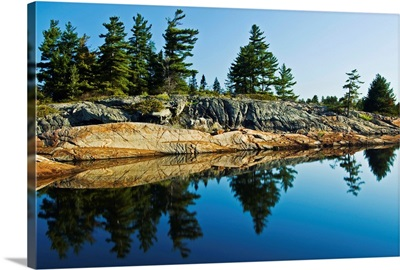 Tree's Reflection In Water, Georgian Bay, Ontario, Canada