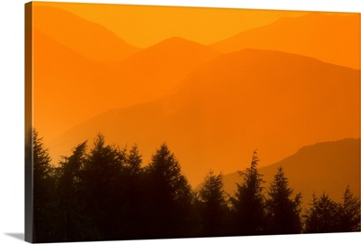 Trees Silhouetted Against Hills, British Columbia, Canada