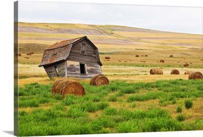 Twisted Barn On Canadian Prairie, Big Muddy Badlands, Saskatchewan, Canada