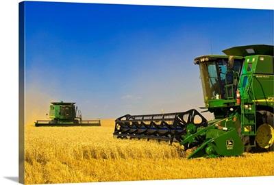 Two Combine Harvesters Work A Field Of Winter Wheat, Near Nesbitt, Manitoba, Canada