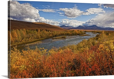 Upper Blackstone River Flowing North Along The Demspter Highway In Autumn, Yukon Canada