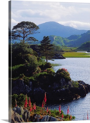 Upper Lake, Killarney, Co Kerry, Ireland; Lake With Mountain In The Distance