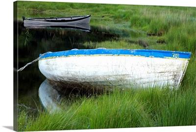 Upper Lake, Killarney National Park, County Kerry, Ireland; Boat In Shore Grass