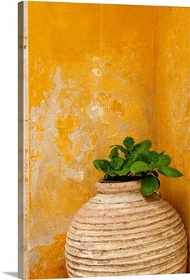 Vase Detail, Chania Old Town; Chania, Hania, Crete, Greece