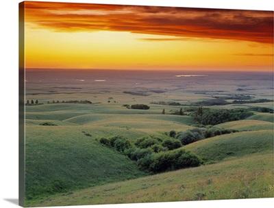 View From The Cypress Hills, Saskatchewan, Canada