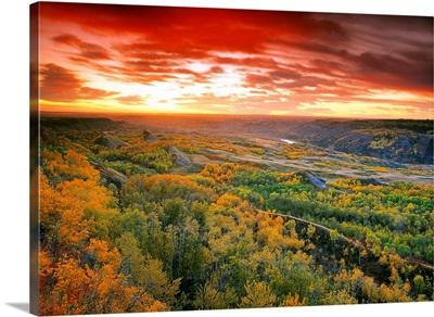 View Of Dry Island, Buffalo Jump National Park, Alberta, Canada