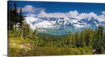 View of Kenai Mountains from Lost Lake Trail near Seward, Alaska, Kenai Penninsula