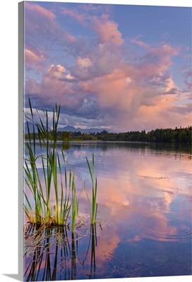 View of sunset clouds reflected in  Westchester Lagoon near downtown Anchorage