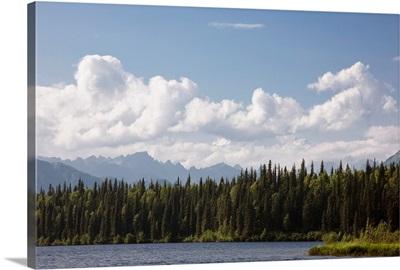 View of the Alaska Range from Byers Lake, Summer, Denali State Park, Southcentral Alaska