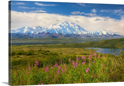 View of the north side of Mt. McKinley on a sunny day