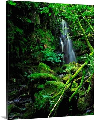 Waterfall, Sloughan Glen, County Tyrone, Ireland