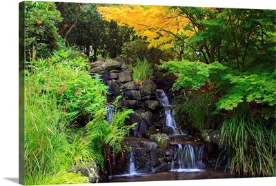 Waterfalls In Crystal Springs Rhododendron Garden, Portland, Oregon