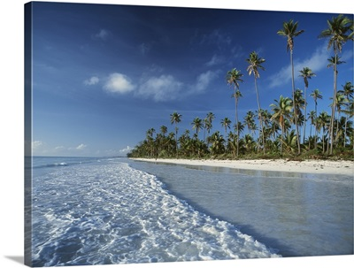 Waves Lapping Shore Of Beach With Palm Trees Behind; Tanzania