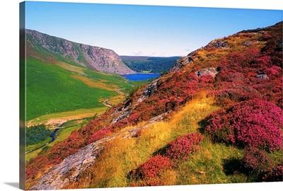 Wicklow Way, County Wicklow, Ireland, Long Distance Walking Trail Near Luggala