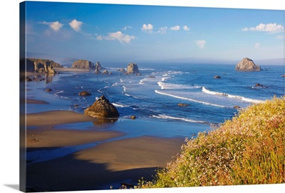 Wildflowers And Rock Formations Along The Coast At Bandon State Park; Oregon, USA