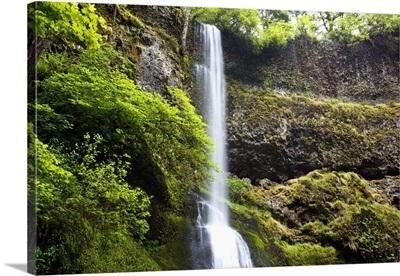 Winter Falls In Silver Falls State Park; Oregon