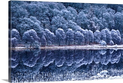 Winter Lake With Hoar Frost, Glendalough National Park, County Wicklow, Ireland