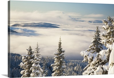 Winter Landscape With Clouds And Snow-Covered Trees; Oregon