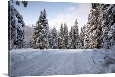 Winter scenic of a snowy road in a snowcovered forest at Girdwood in Southcentral Alaska