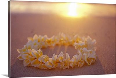 Yellow Plumeria Lei On Beach With Shadow