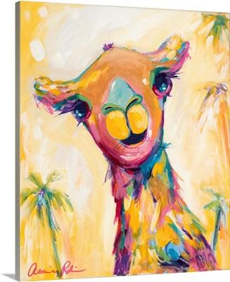 Camel Babe
