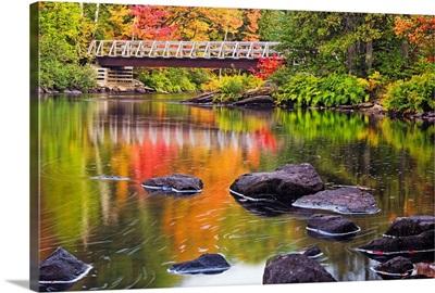 Fall Along the Oxtongue River