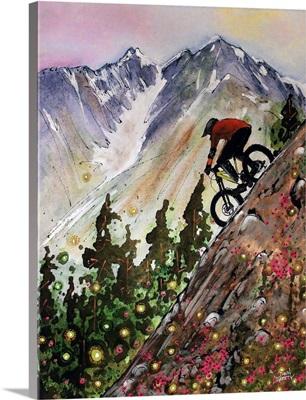 Alyeska DH Biker