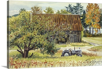 Apple Tree, Barn and Tractor