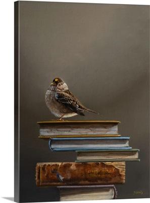 Book Cairn