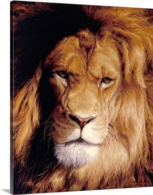 Botswana King