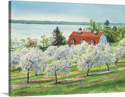 Grand Traverse - Penn Orchard