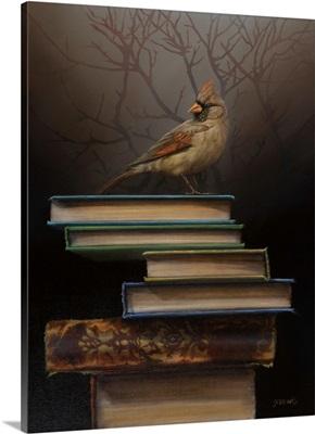 The Book In Between