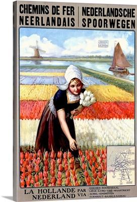Chemins de Per Neerlandais, Netherlands, Tulips, Vintage Poster