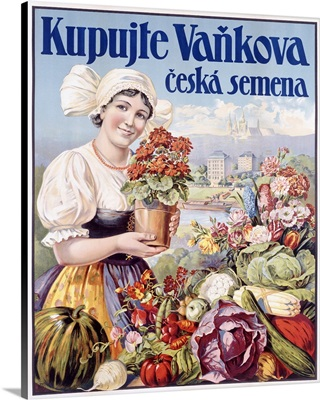 Kupujte Vankova, Woman with Flowers, Vintage Poster