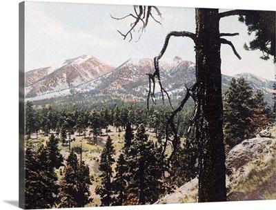 San Francisco Mountains Arizona Vintage Photograph