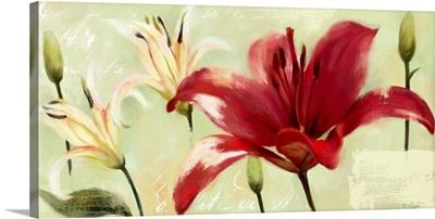 Bursting Lilies Garden II