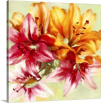 Bursting Lilies I