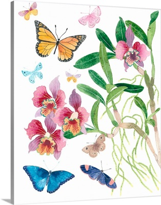 Butterflies and Orchids I