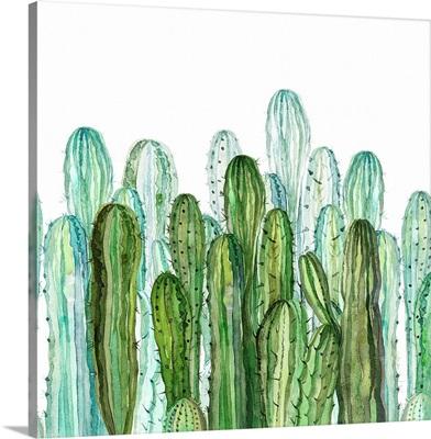 Delightful Cactus Garden II