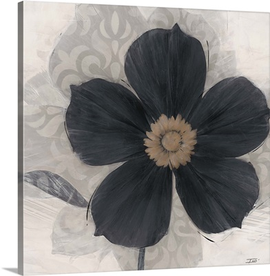 Elegance Noir