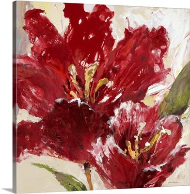 Exuberant Red Tulip