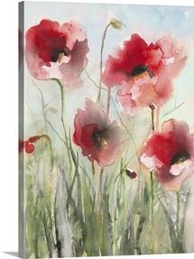 Field Poppies II