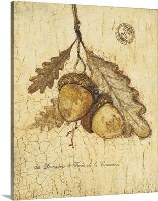 Gilded Oak